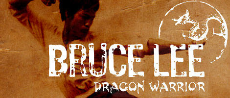 Bruce Lee Dragon Warrior fighting game for iPhone and ipad